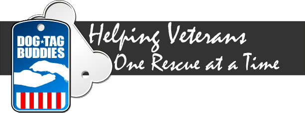 service dogs for veterans